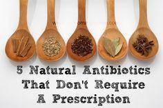 5 Natural Antibiotics That Don't Require A Prescription