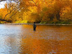 Fall Fishing. Promote local progress using boisethinks.org!