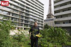 """""""Potagers, ruches, poulaillers… les petites merveilles écologiques s'épanouissent au-dessus de nos têtes.""""... http://www.parismatch.com/Vivre/Art-de-vivre/Sur-les-toits-de-Paris-on-seme-a-la-folie-1049833"""