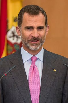 King Felipe VI gives a speech during a meeting with members of the Spanish Community at Hospital Espanol on June 30, 2015 in Mexico City, Mexico.