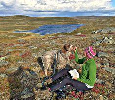 TIL fjell i høstferien? Her er tre enkle turer: #høstferie #dnt #gaustatoppen #blefjell #liomseter Blog, Painting, Travel, Art, Nature, Art Background, Viajes, Painting Art, Kunst