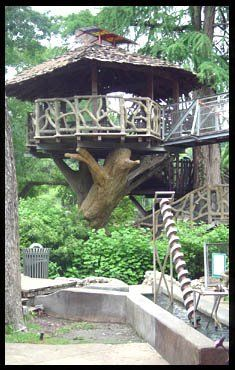 HEB Science Treehouse....never get too old for this! Had a blast with my best childhood guy friends last time I was there. Like childhood never left us :)