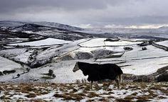 Um cavalo veste um casaco quente no Derbyshire, Inglaterra