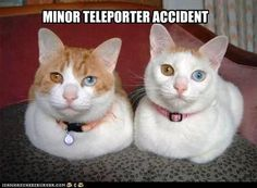 MINOR TELEPORTER ACCIDENT. For all my Trekkies. :P ^no, for all Artemis Fowl fans. Holly Short, Artemis, have a bad day?
