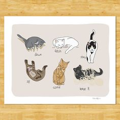 Cats Being Cats 8x10 Modern Art Print  Humorous Gift by PopDoggie, $18.00
