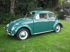 Vw Super Beetle, Beetle Bug, Volkswagen Beetles, Volkswagen Beetle Vintage, Vw Volkswagen, Vw Cars, Find Picture, Toyota Celica, Vintage Cars