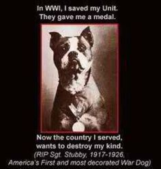 America's most decorated War Dog.