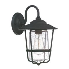 Features:  -Shade color: Clear.  -Shade material: Seeded glass.  -Wall lantern can be opened to change the bulb by uninstalling the screws at the top.  Lighting Type: -Wall lantern.  Finish: -Black.