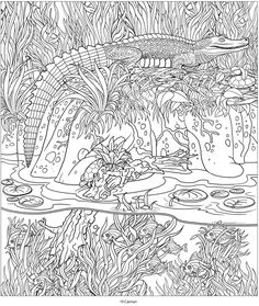 Creative Haven AMAZON ANIMALS A Coloring Book with a Hidden Picture Twist By Jan Sovak COLORING PAGE 4