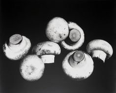 Irving Penn, Still Life with Mushrooms New York, 1966
