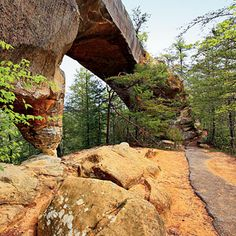 Red River Gorge, Kentucky    A 1-mile-loop trail leads over and under Sky Bridge, a 76-foot-long stone arch that forms a bridge amid the treetops. www.fs.fed.us/r8/boone   SouthernLiving.com Tennessee, Virginia, Places To Go, Places To Travel, Utah Arches, Sky Bridge, Seven Wonders, Vacation Places, Vacation Ideas