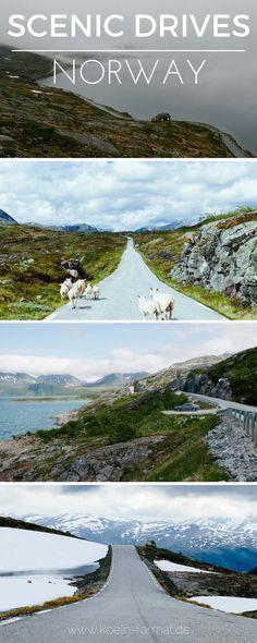Roadtrip Norwegen: mit dem Auto durch Norwegen! Hier sind die schönsten Routen zum Nachfahren mit vielen Tipps von der Straße. via @koelnformat