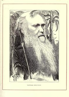 mudwerks:    (via Cartoon Portraits of Leading 19th Century Figures (1873) | The Public Domain Review)    Charles Darwin    …Cartoon Portraits and Biographical Sketches of Men of the Day (1873) with drawings by Frederick Watty…