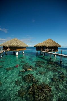 Tahiti's 20 Best Overwater Bungalow Resorts | Exotic Travel | Islands.com