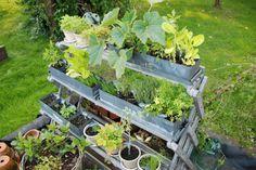 Plantenetagère 3 laags groot - Esschert Design Accent op Wonen