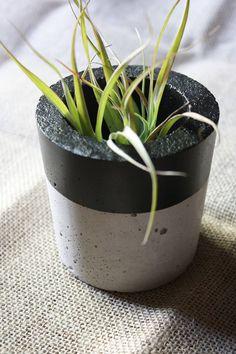 Sleek Cylindrical Concrete Planter Concrete Planters, Planter Pots, Love Natural, Creative Outlet, Air Plants, Natural Materials, Color Pop, Outdoor Living, Succulents