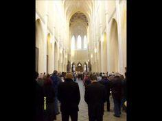 Petr Hlavatý , Dvořák - Ave Maria