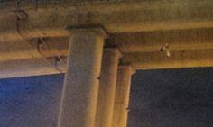 Hallan cadáver cubierto con vendas colgado en puente del DF