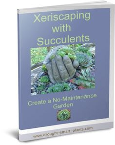 Xeriscaping+with+Succulents+E-Book