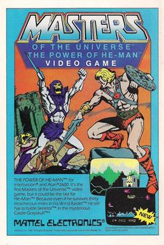 Masters of The Universe: The Power of He-Man Video Game. . . I'm sure it was good.