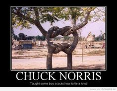 Chuck Norris Jokes | The 50 Best Chuck Norris Facts & Memes (Page 3)