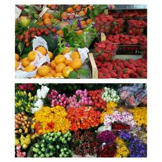 Fruits or flowers, which one's?