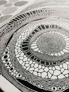 Rebecca Blair Artwork: Photo - Northern Irish / Graphic Design Student / I Like Drawing / I Like Taking Photographs / All Original - Dibujos Zentangle Art, Zentangle Drawings, Doodle Drawings, Doodle Art, Zentangles, Pen Art, Aboriginal Art, Art Plastique, Moleskine