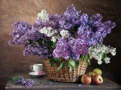 БЛЮЗ СИРЕНЕВЫЙ.... Обсуждение на LiveInternet - Российский Сервис Онлайн-Дневников Lilac Bouquet, Still Life, Floral Arrangements, Glass Vase, Lavender, Projects To Try, Nature, Plants, Photography