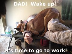 Come on Dad, lets go