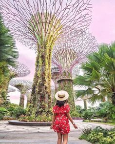 Singapore gardens by the bay photos goals photos to take in Singapore