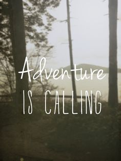 Adventure in Anacortes, WA. Seeker Quotes, Fun Things, Random Things, Felix The Cats, Auction Ideas, Silent Auction, Happy Campers, Adventure Awaits, Word Porn
