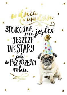 Passion Plus - Kartki, 1d And 5sos, Special Day, Wish, Diy And Crafts, Funny Memes, Happy Birthday, Lol, Humor, My Love