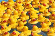 Rubber Duck Fundraiser Tips - This simple event raises lots of money and is very easy to do. Read the article for lots of tips on adding in more fun activities and raising lots of money. Special duck by a ticket whoever has the special duck wins the prize Danbo, Miss Piggy, Wtf Fun Facts, Funny Facts, Random Facts, Duck Float, Fundraising Events, Fundraising Ideas, Auction Baskets