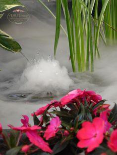 woda, ogród, aranżacja, kwiaty, flower, www.adhome-rekodzielo.blogspot.com Plants, Planters, Plant, Planting