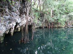 puerto-morelos-cenotes