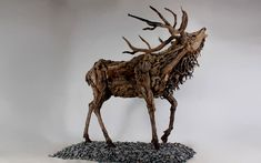 Les sculptures de dragons en bois flotté et autres animaux de DoranWebb 2Tout2Rien