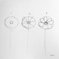 Botanical artist kate kyehyun park creates art tutorials on how to draw any flower in just 3 simple steps Easy Flower Drawings, Flower Drawing Tutorials, Easy Drawings, Art Tutorials, Pencil Drawings, Easy To Draw Flowers, Drawing Flowers, Paintings Of Flowers, Simple Flower Drawing