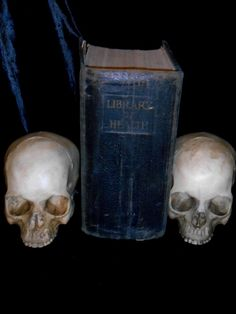 Realistic Human Skull Bone Replica great bookends for sale http://www.gothicroseantiques.com/RealisticHumanSkullBoneReplica.html