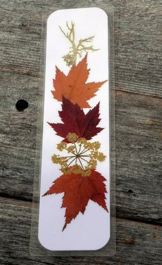 PRESSED FLOWER BOOKMARK  Real Maine Fall Foliage by MyHumbleJumble, $5.00