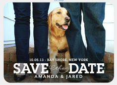 Engagement photo with our dog, Marlin for our Save the Date cards