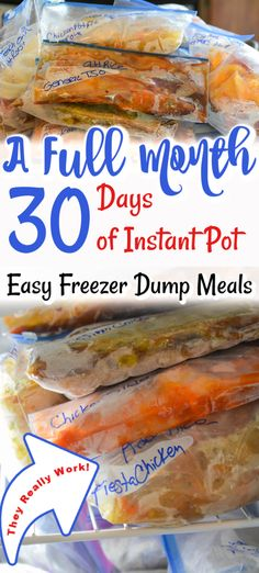 A Full Month of Easy Instant Pot Freezer Dump Meals Instant Pot Freezer Meals Pork Freezer Meals, Freezable Meals, Make Ahead Freezer Meals, Crock Pot Freezer, Beef Meals, Freezer Cooking, Cooking Tips, Crock Pot Dump Meals, Freezer Recipes