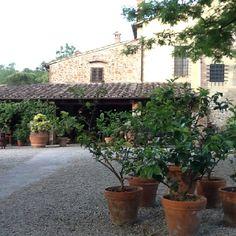 Tuscany dream! Casa Masi...