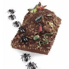 Bug Mountain Cake