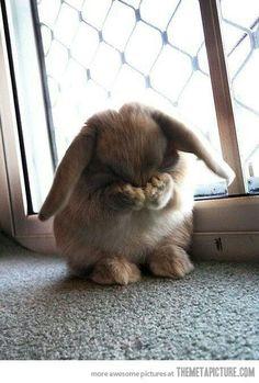 Oh no...I missed EASTER!!