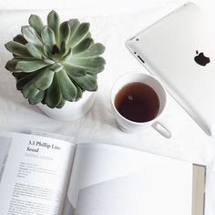 Product Styling & Photography |  Tabletop Styling & Flat laying styling |  White mug, iPad with green succulent plant |  Clean, Bright & White Palette