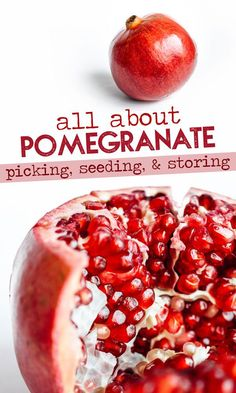 Everything you need to know about pomegranate. How to choose the perfect one how deseed a pomegranate how to store it and more. Pomegranate Uses, Pomegranate Recipes, Fruit Recipes, Fall Recipes, Smoothie Recipes, Whole Food Recipes, Pomegranate How To Eat, Seasonal Food