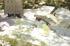 la maison boop!: It's Time to Celebrate! ♡ st valentine's picnic