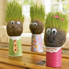 grass heads made with yogurt containers, nylons, soil and grass seeds.