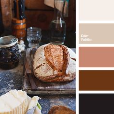 almost black, color of baked clay, color of brown clay, color of ceramics, color of tree, dark brown, gray-brown, light brown, monochrome brown palette, monochrome color palette, shades of chocolate color, warm shades of brown.