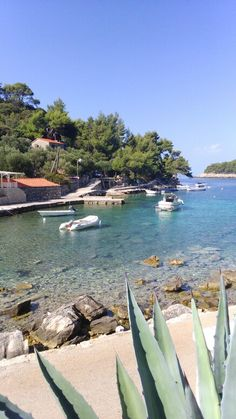 I've stood right there <3 Korčula Kroatien